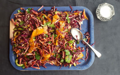 Red Cabbage + Carrot Slaw