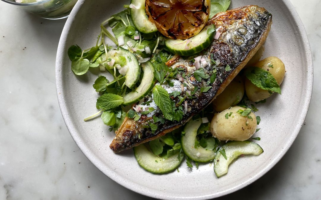 BBQ mackerel with quick pickled cucumbers and charred lemon salad